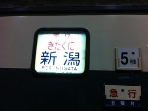 写真 (8).JPG